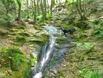 Wasservariationen und Fels