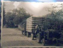 Berufswunsch: Landwirt