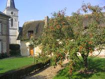 Marché aux Pommes de Sainte-Opportune-la-Mare