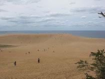 砂丘の手前から日本海を望む