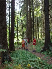 Durch den Wald streifen