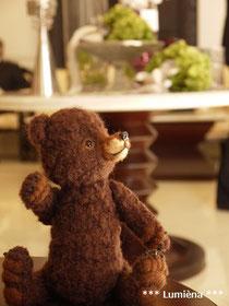 グリズリーベアのあみぐるみ&アンティーク家具 AMIGURUMI of grizzly bear & antique furniture