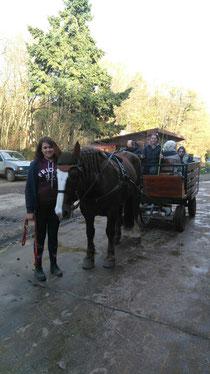 Tarann et sa voiture hippomobile avec rampe d'accès pour fauteuils roulants