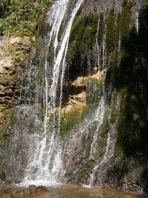 Qi begnet uns überall in der Natur. Wasser ist erfüllt von Qi.