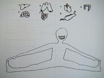 臓器系の勉強