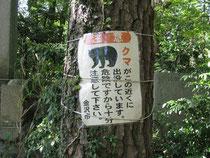 クマ注意。