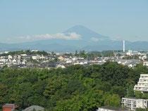 久々にみえた夏の富士