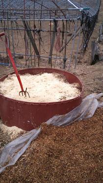 米ぬかを剪定枝にドン!!