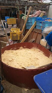 米ぬか発酵中
