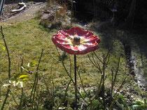 Frühblüher im Garten