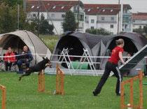 Unser A-Lauf beim HSC Augsburg