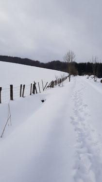 Tiefster Winter in Spanien..