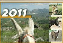 Calendario de los Burros 2011
