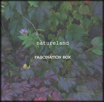 FASCINATION BOX