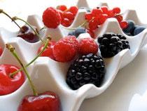 CELINE LECLERCQ DIETETICIENNE NUTRITIONNISTE