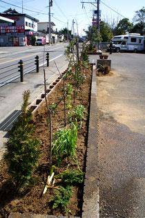 道路に面する看板等を撤去した植栽帯