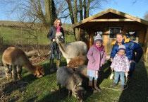 Simone Bahrmann Trekking mit Alpakas – das bieten (v. l.) Jennifer, Lia, Juli und Bart Schoenmakers im Neander-Wander-Land an.