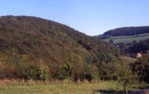 Der Rinnenberg im Extertal. Foto: M. Füller