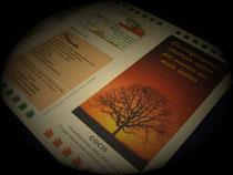 Produzione-depliant-brochure