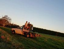 Unser Farmauto um alle Fläschchen abzufahren. Ein sehr schöner Sonnuntergang