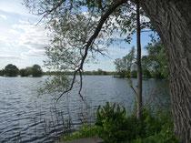 Das Ufer der Havel ist nur 500 m vom Haus