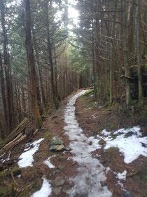 Trailrunner vs. Schlittschuh