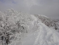 もう少しで頂上です。樹氷がキレイ。