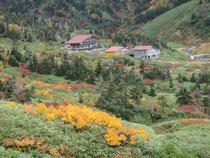 南竜山荘付近の紅葉
