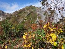 秋色に染る木々の向こうに三方崩山の山頂。