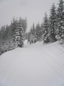 Gantrisch 8.1.2012