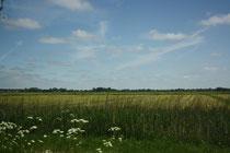 2 Landschaft/Landscape
