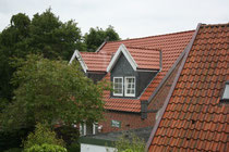 53 Dächer/Roofs