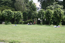 113 Gärten und Anlagen/Gardens and plants