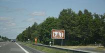 45 Schild/Exit