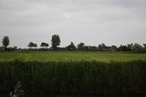 192 Landschaft/Landscape