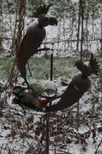 112 Der Specht/The woodpecker