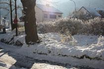 37 Schnee/Snow