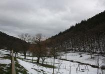 111 Die Lanschaft/The landscape