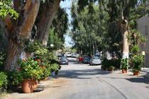 45 Die Straßen/The streets