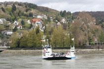 82 Schiff im Rhein/Ship in the Rhein