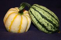 4 Kürbisse/Pumpkins
