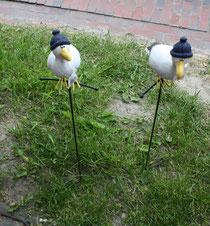 47 Seemöwen/Seagulls