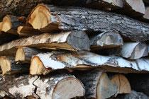 22 Holz/Wood