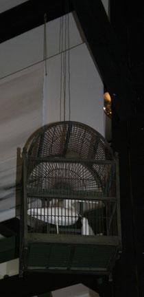 68 Käfig/Cage