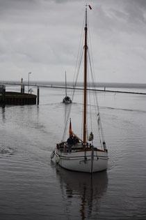 155 Segelboot/Sailing boat