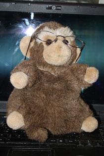 45 Affe/Monkey
