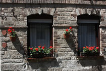 20 Dekorierte Fenster/Decorated windows
