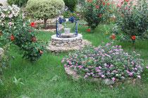 3 Garten in Griechenland/Garden in Greece