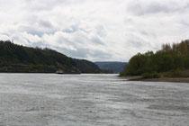 87 Der Fluss Rhein/The river Rhein