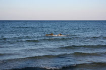 118Das Wasser/The water